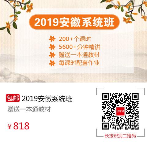 2019年安徽系统班