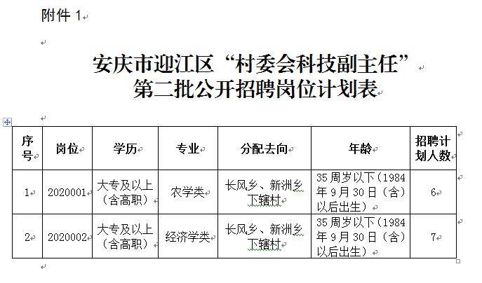 """安徽安庆市迎江区""""村委会科技副主任""""第二批招聘13人公告"""